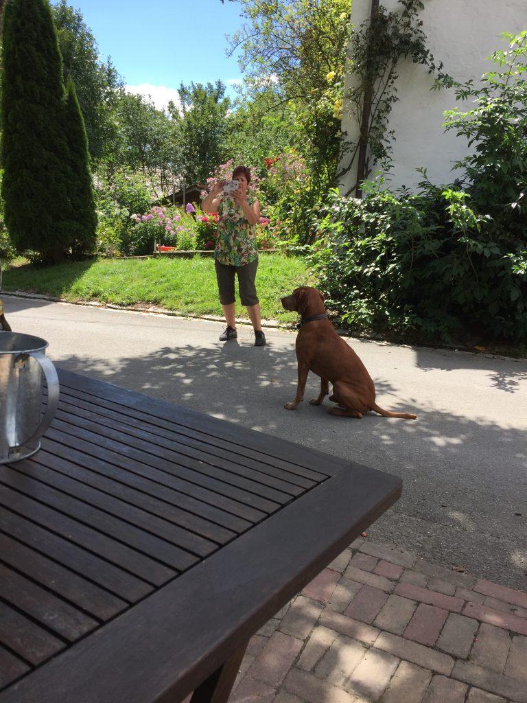 Rast am Rosenstüble bei unserer Wanderung um den Mindelsee, bewacht vom Hofhund