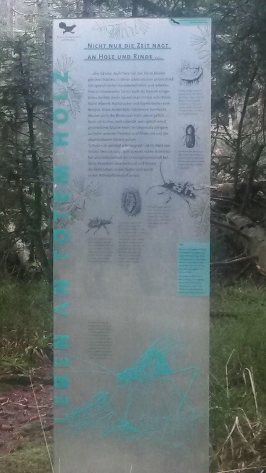 Infotafel auf dem Weg vom Kaltenbronn zur Grünhütte über den Wildsee