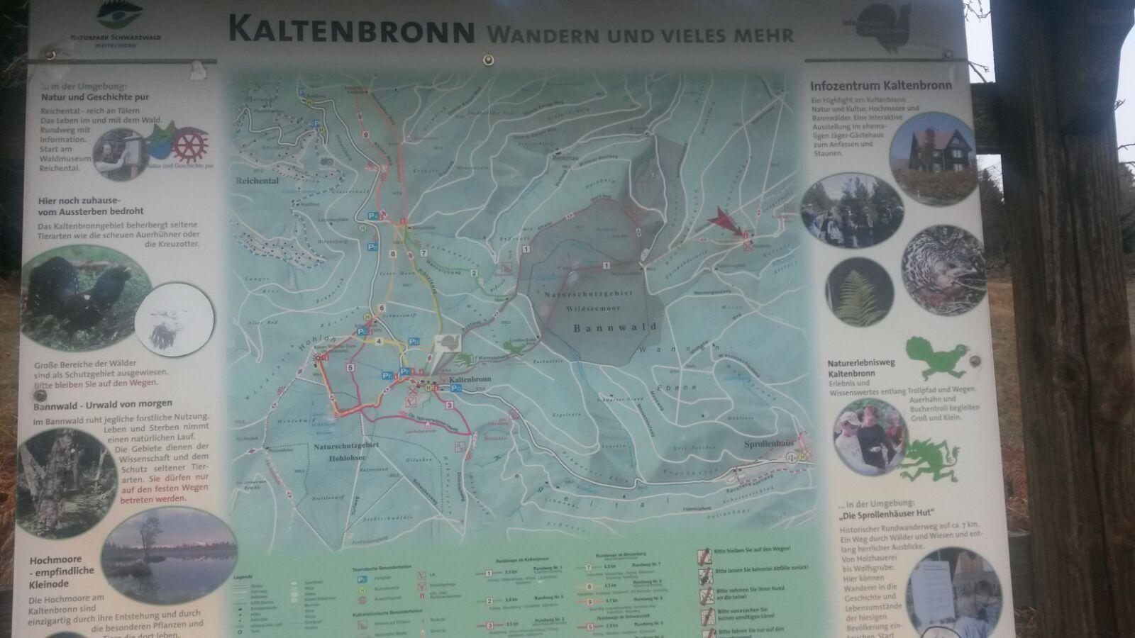 Wildseemoor Reiseblog Ü50 Wanderung