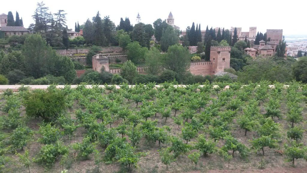 Spanien Andalusien Granada