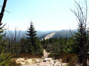 Genießerpfad Wanderung Mummelsee