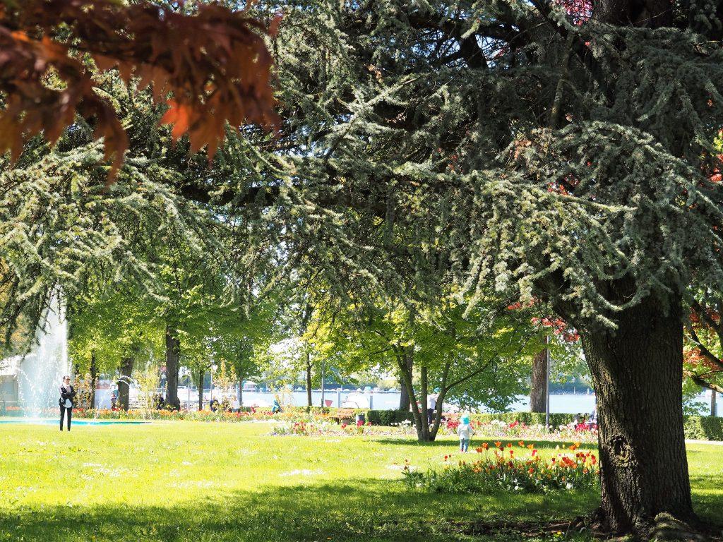 Wunderschöner Park auf der Halbinsel Lindau im Bodensee