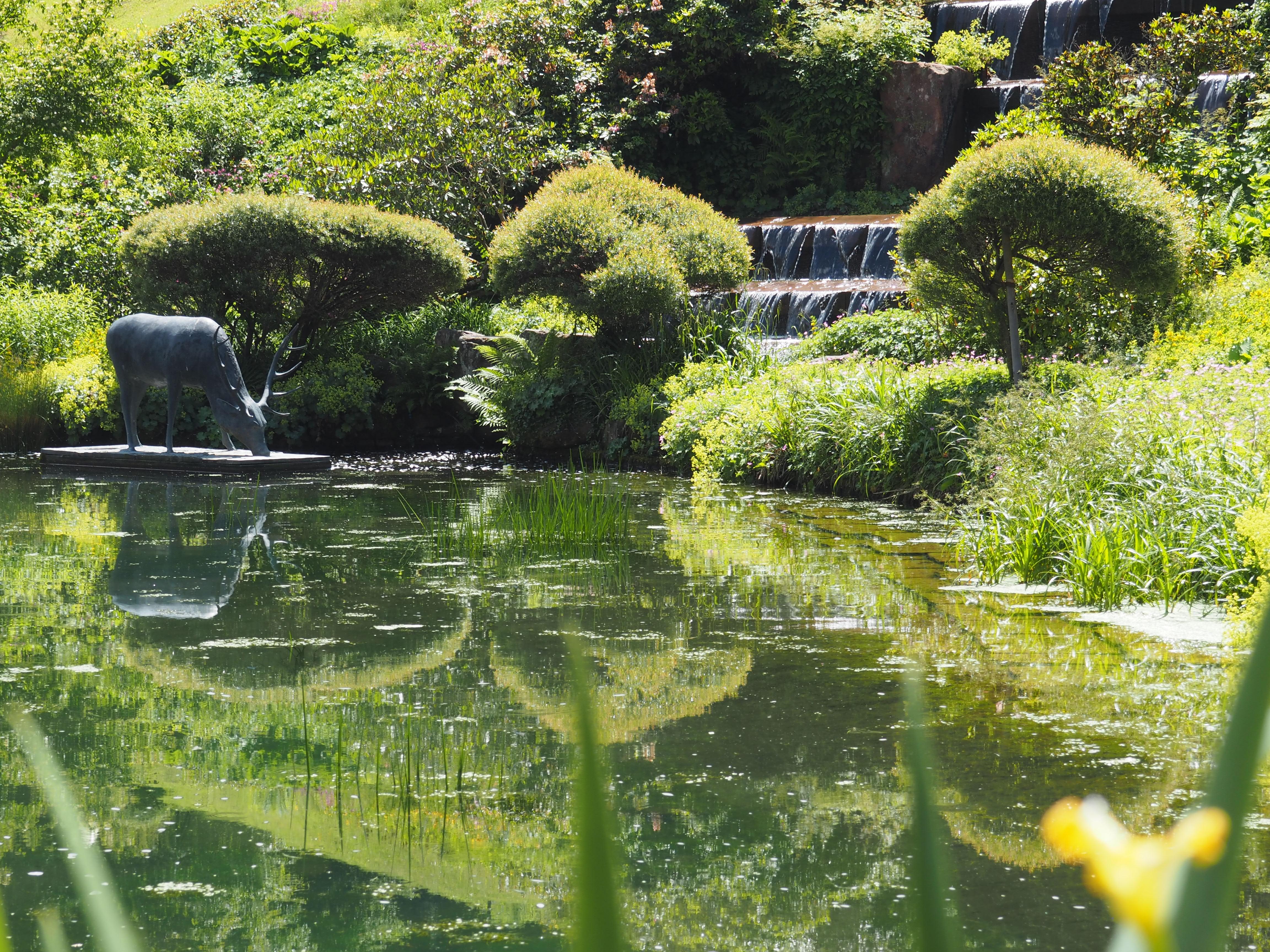Der Legende nach hat dieser Hirsch im Kurpark von Bad Teinach die heilenden Quellen des Teinachtales entdeckt.
