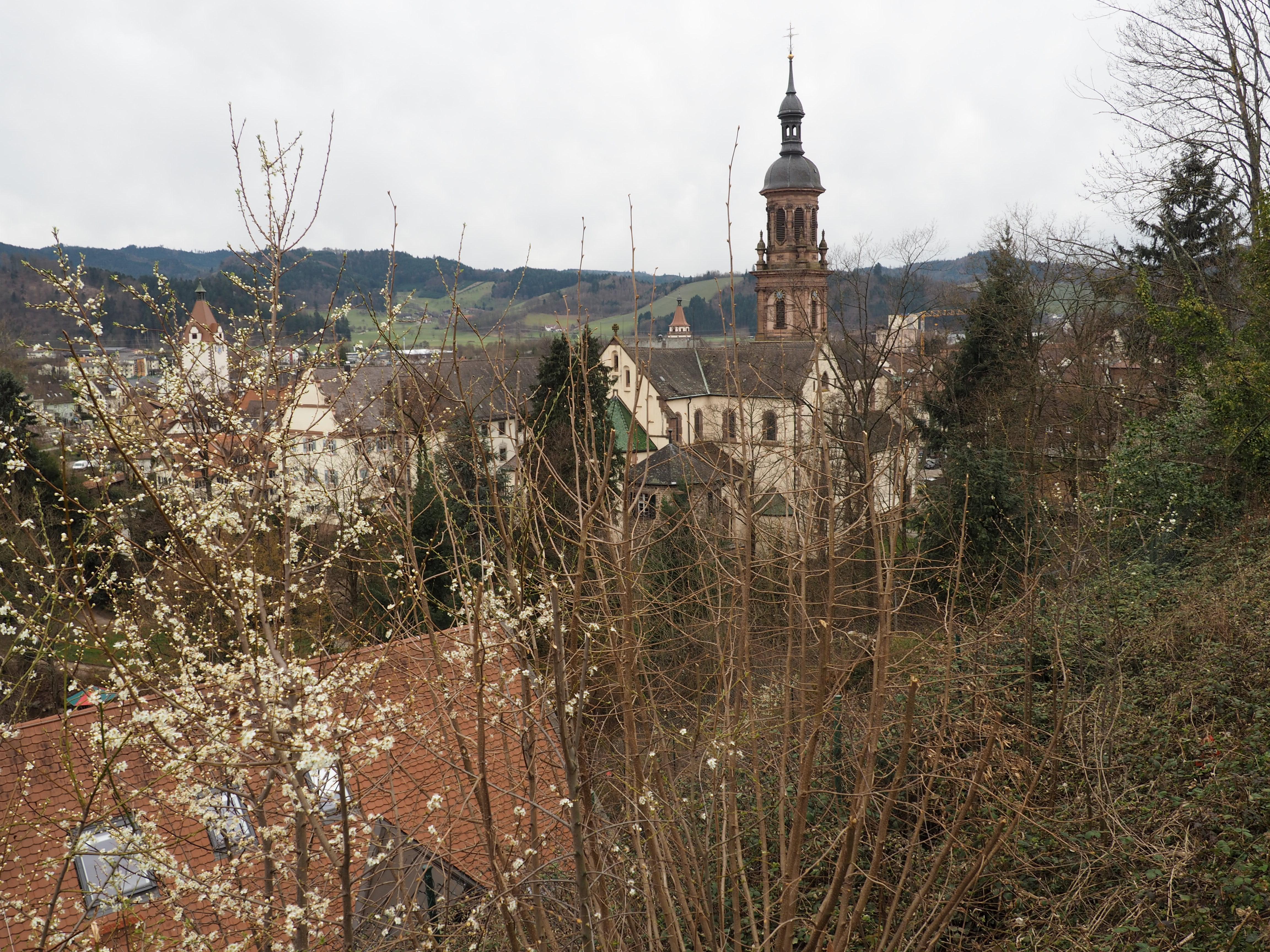 Auf dem Tälerpfad über den Dächern von Gengenbach