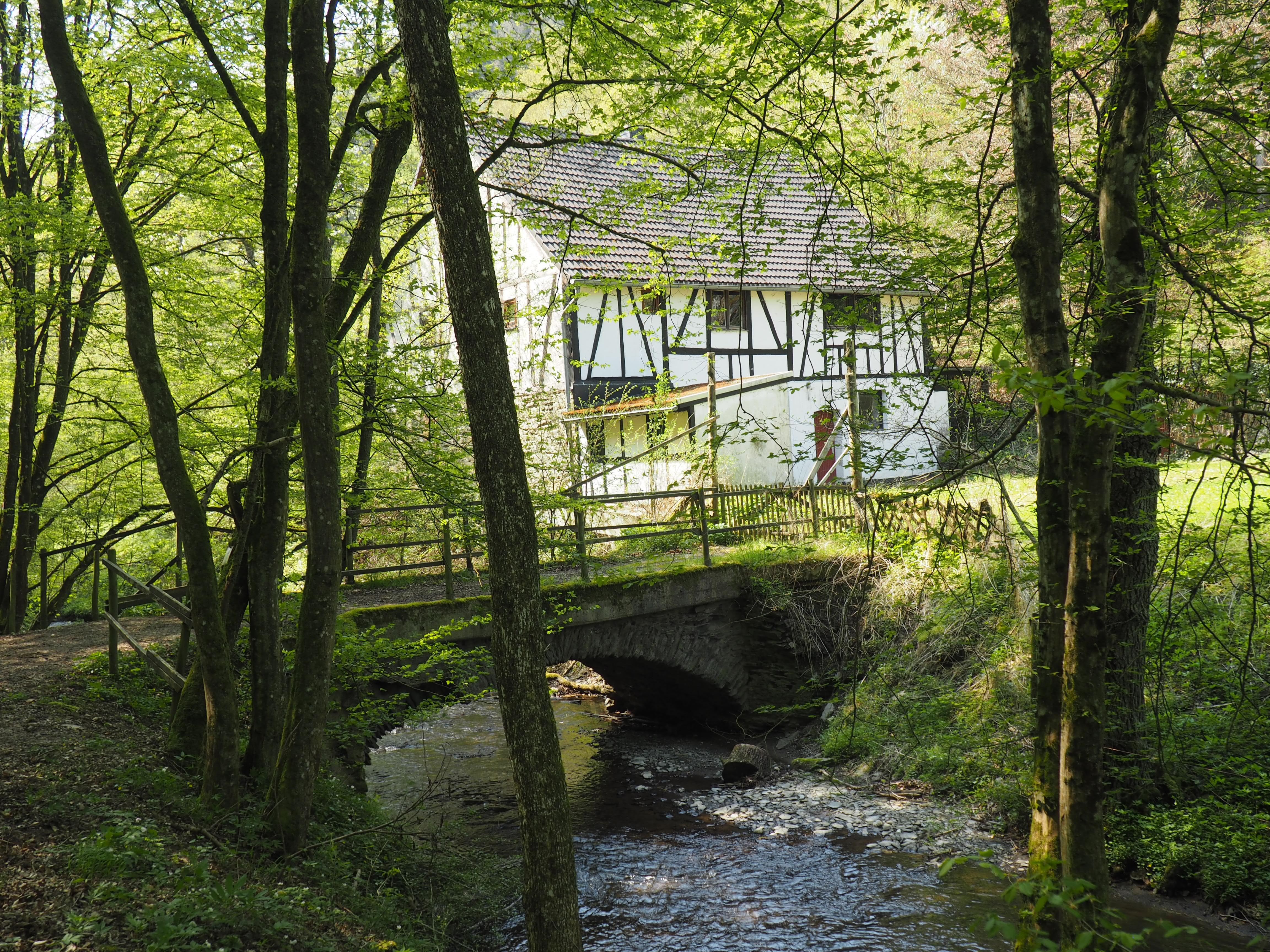 Alte Mühle in der Ehrbachklamm in der Nähe von Brodenbach an der Mosel