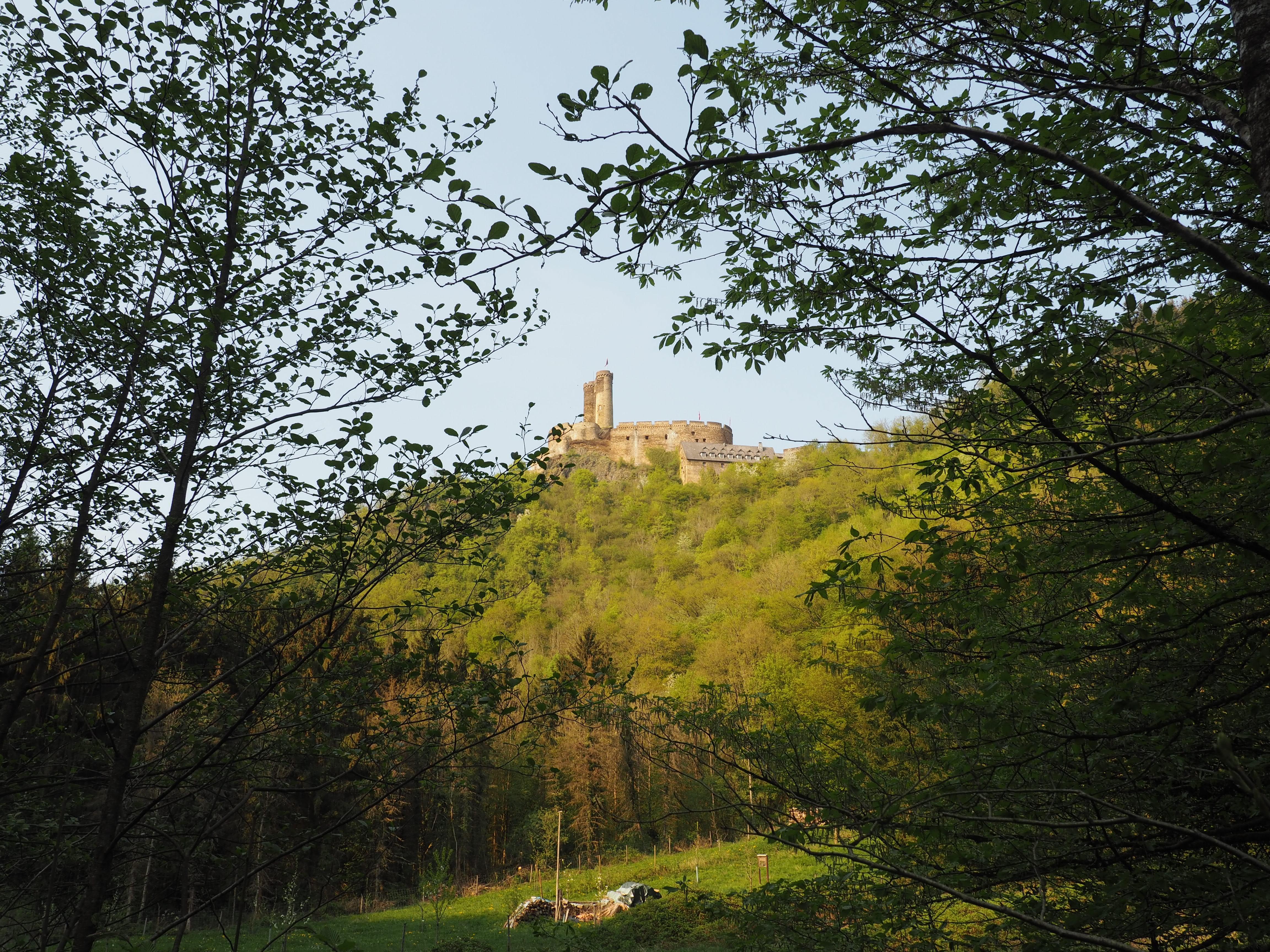Erlebnisburg Ehrenburg, entdeckt bei der Wanderung durch die Ehrbachklamm