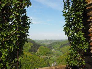 Wunderbare Aussicht von der Ehrenburg in Brodenbach an der Mosel