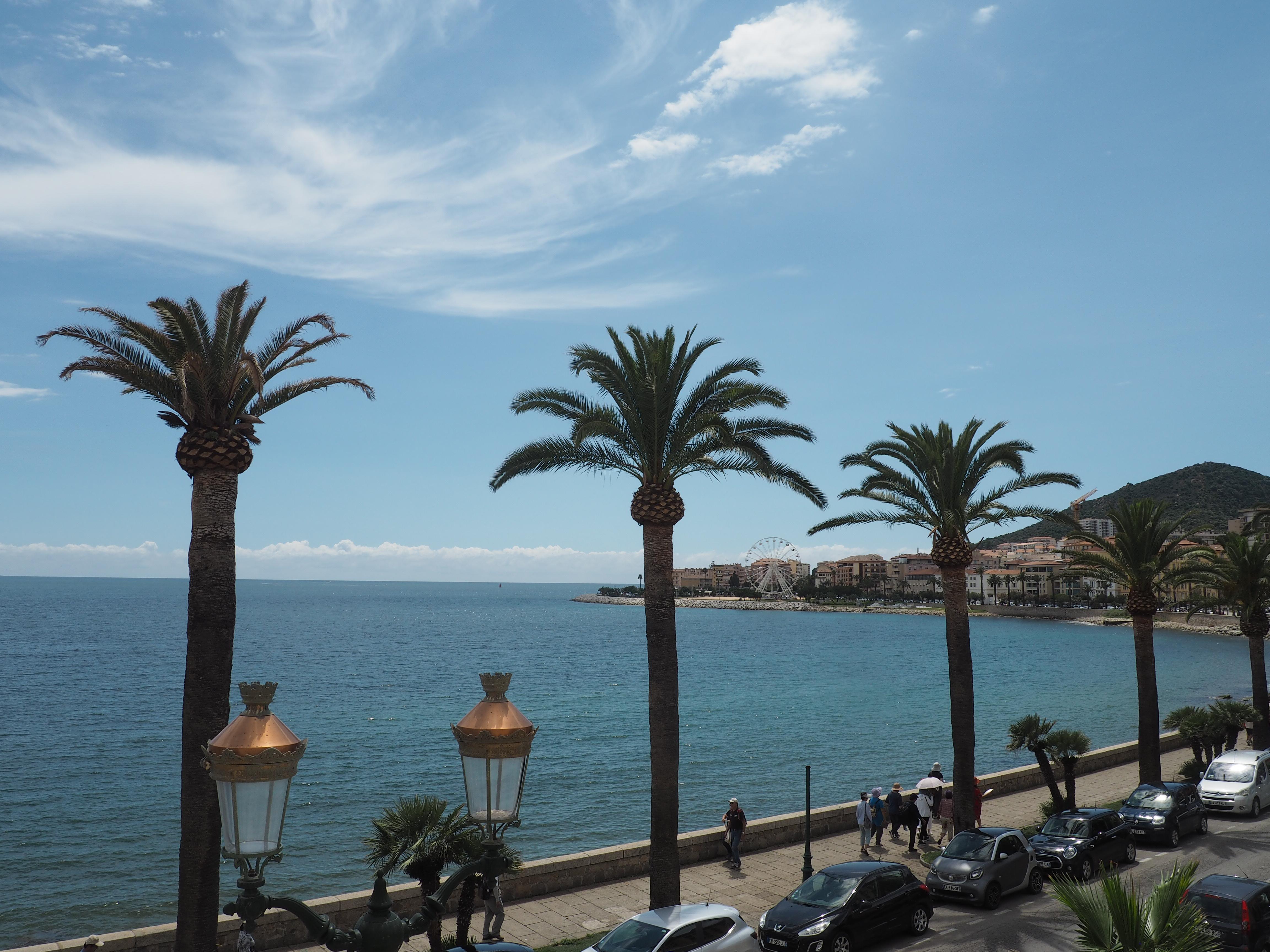 Palmen säumen die Uferpromenade von Ajaccio, der Hauptstadt von Korsika