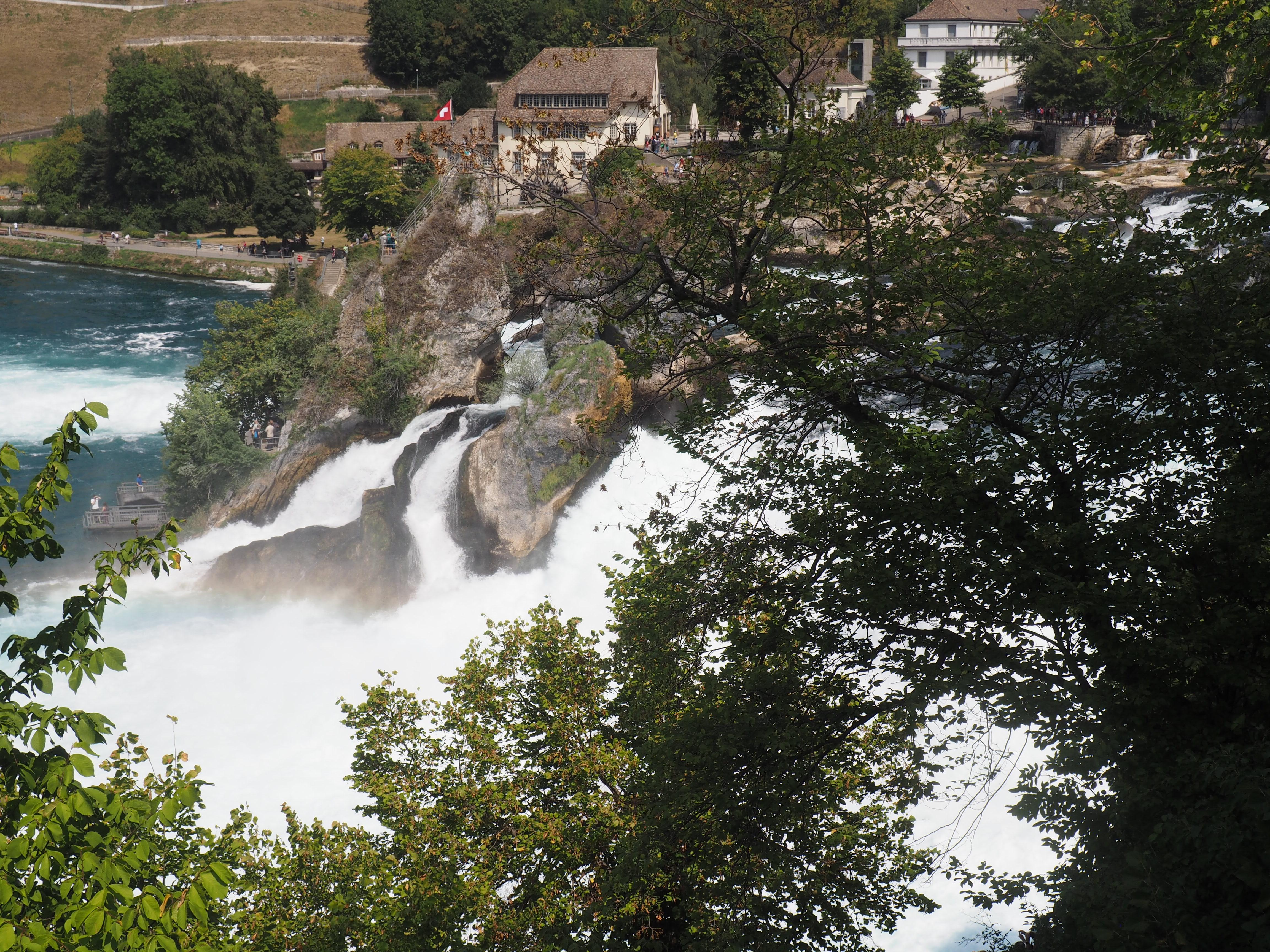 Tosende Wassermassen am Rheinfall bei Schaffhausen, dem größten Wasserfall Europas
