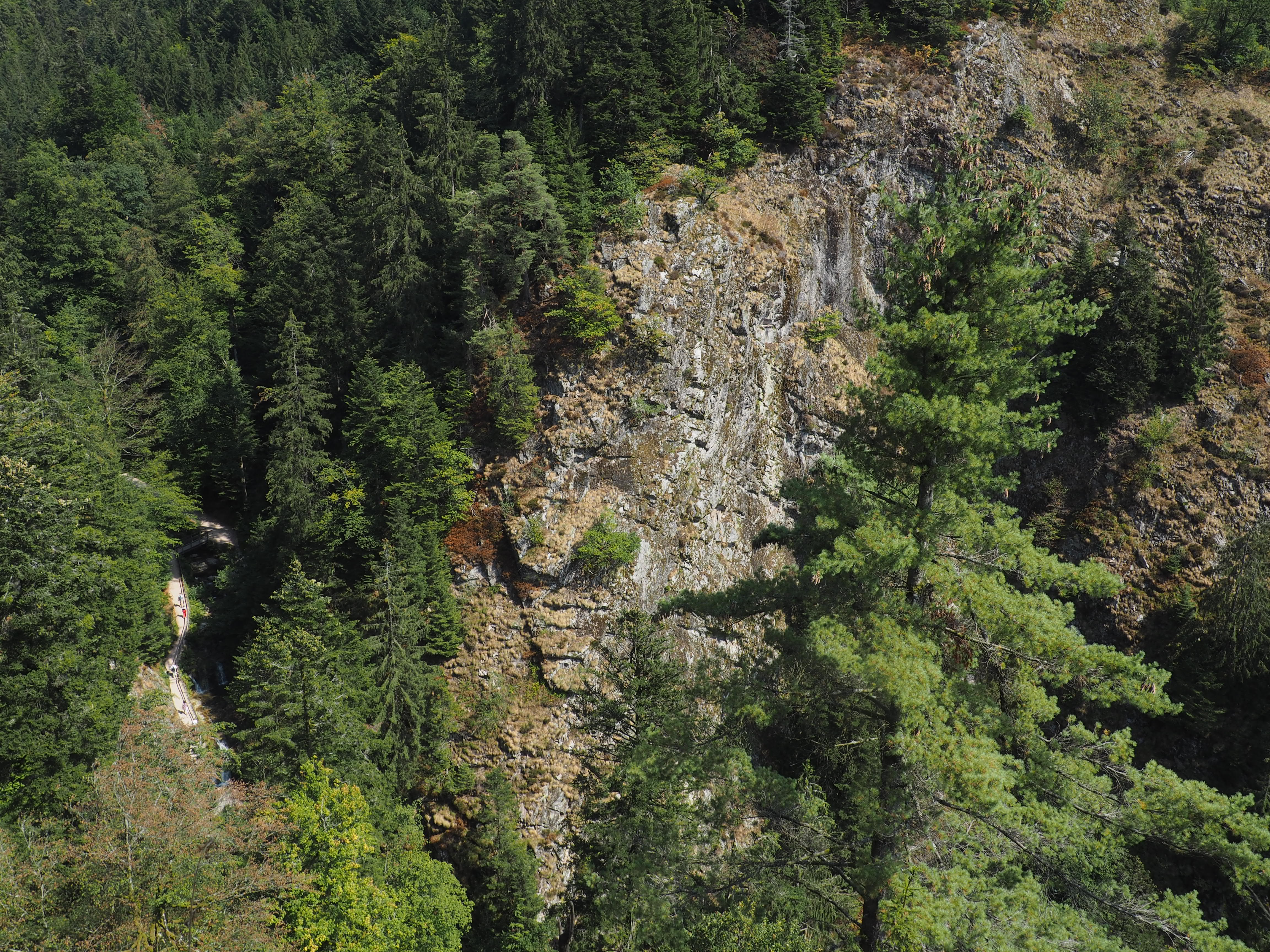 Aussicht von der Engelskanzel Allerheiligen Wasserfälle im Schwarzwald