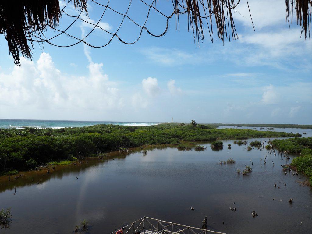 Aussicht vom Beobachtungsturm im Punta Sur Nationalpark auf Cozumel in Mexiko