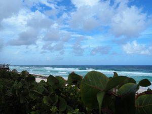 Traumhafte Aussicht auf die Brandung der Ostküste von Cozumel