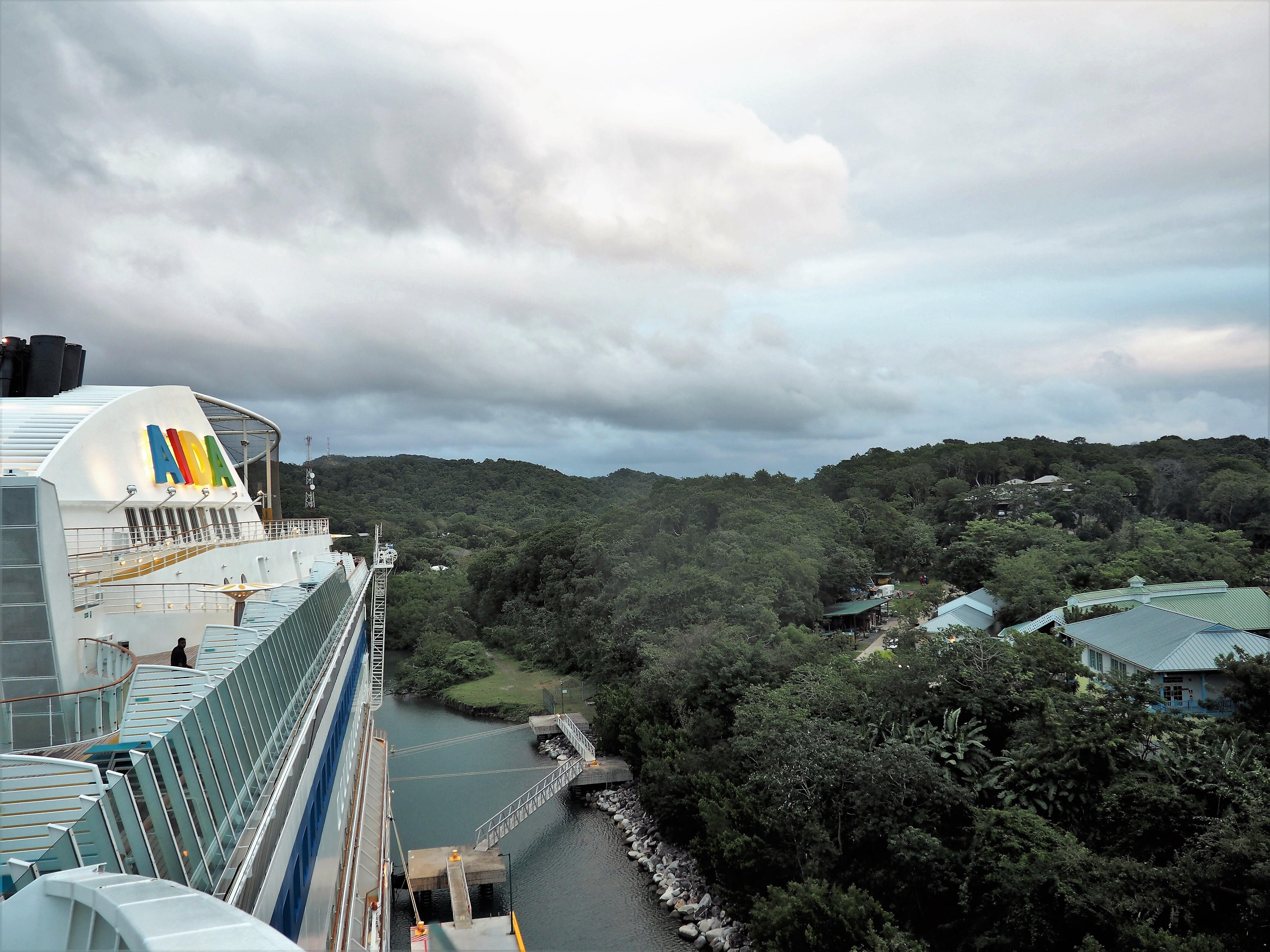 Blick von der AIDA auf den Dschungel von Roatan