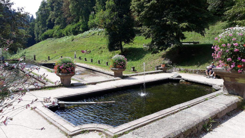 Wasserbecken an der Klosterruine Allerheiligen im Schwarzwald