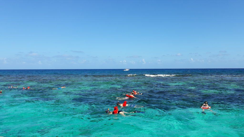 Beim Schnorcheln im Korallenriff vor Grand Cayman