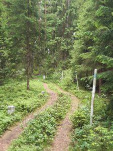 Grenzwandern in Bad Neualbenreuth