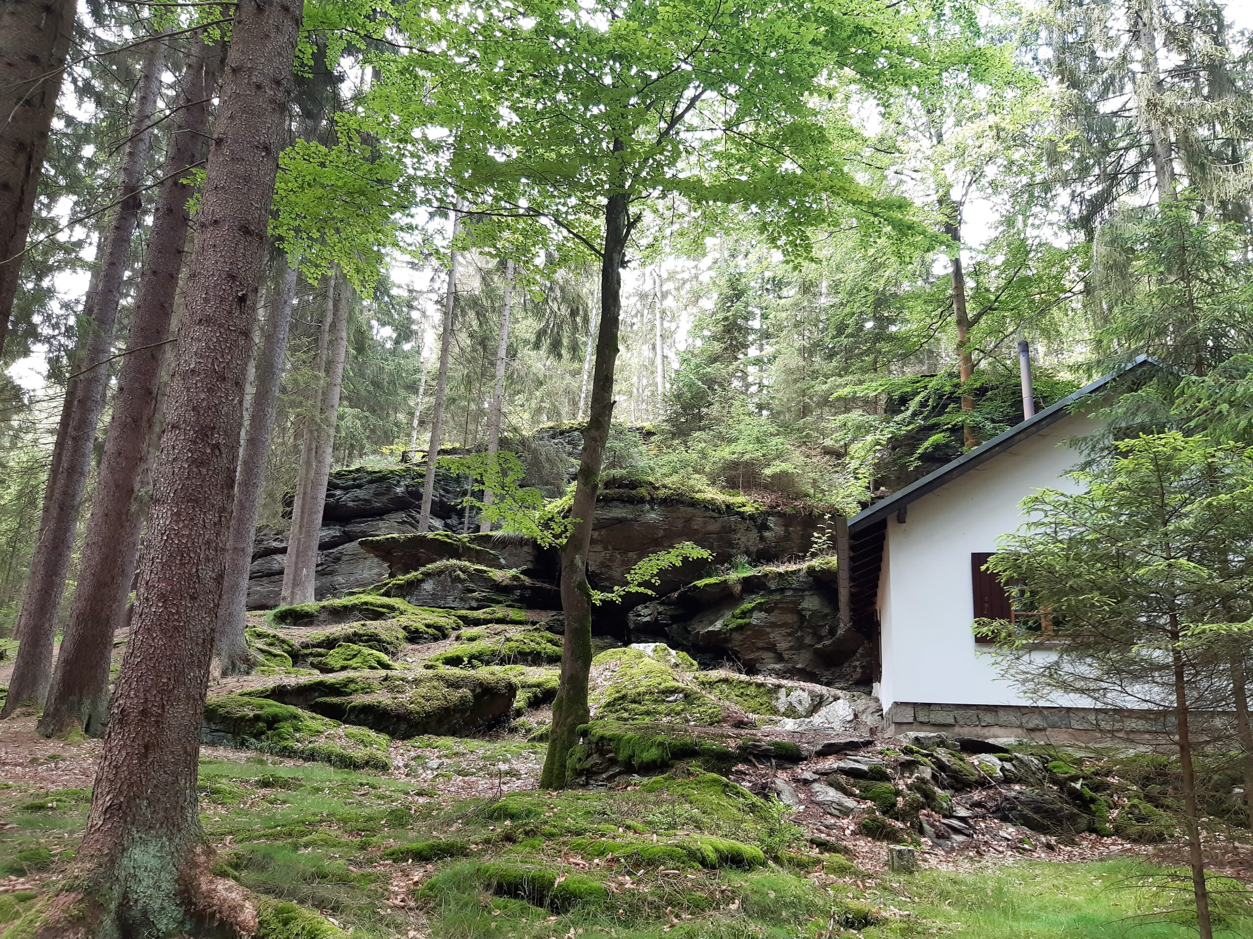 Rinnlstein Rundweg Bad Neualbenreuth Wandern