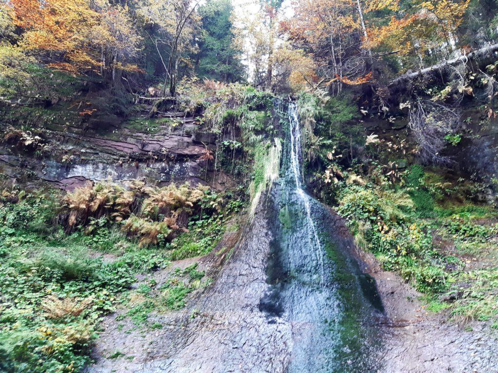 Sankenbachwasserfall Baiersbronn